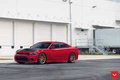 Dodge Charger Scat Pack - Hybrid Forged - HF-3 - © Vossen Wheels 2019 -1014 (VossenWheels) Tags: charger chargeraftermarketwheels chargerscatpack chargerscatpackaftermarketwheels chargerscatpackwheels chargerwheels dodge dodgeaftermarketwheels dodgecharger dodgechargeraftermarketwheels dodgechargerscatpack dodgechargerscatpackaftermarketwheels dodgechargerscatpackwheels dodgechargerwheels dodgewheels glossgold hf hfseries hf3 hybridforged scatpack scatpackaftermarketwheels scatpackwheels vossen vossenwheels ©vossenwheels2019