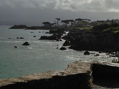 IMG_3186 (mudsharkalex) Tags: california pacificgrove pacificgroveca