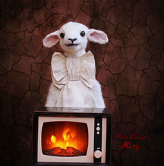 Fire 🇹🇻 (pure_embers) Tags: pure embers laura pureembers uk england whimsical cute photography portrait lamb sheep taxidermy animal sculpture mary doll collector anthropomorphic adele morse tv fire present luxa light