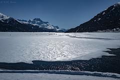 Lake Silvaplana, Switzerland (TMStorari) Tags: silvaplana switzerland engadina engadin grigioni graubünden montagne mountains landscape landschaft paesaggi europe svizzera schweiz ghiaccio frozenlake lake lago silvaplanasee paesaggioalpino alpine lagoghiacciato