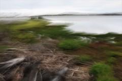 ICM 2019 1 #11 (haywoodtaylor) Tags: beach minimalist icm blur sea coast intentionalcameramovement sky mist water ocean lakeside grass