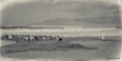 Morning by the Sea 28... (vilmaca) Tags: dog woman morningbythesea painterly icm intentionalcameramovement california beach ocean waves