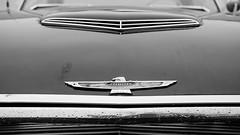 vintage bird (jtr27) Tags: dscf2998xl jtr27 fuji fujifilm fujinon xe2s xf 35mm f2 f20 rwr vintage antique classic car automobile auto ford thunderbird tbird