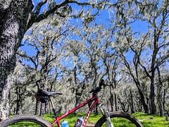 2019 Bike 180: Day 027 (spamajama) Tags: 2019bike180