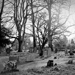 Flaxton churchyard in morning (jhotopf) Tags: carlzeissplanar80mmf28 uk gb northyorkshire analogue film noiretblanc blancoynegro blackwhite pmkpyro fp4 ilford 503cx hasselblad