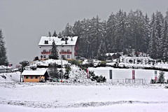 Nauders in the snow ... (4680) (Le Photiste) Tags: clay nauderstirolaustria austria naudersinthesnow winter snow ngc nature planetearthnature planetearth mostrelevant mostinteresting perfectview beautiful building houseinthesnow afeastformyeyes aphotographersview autofocus artisticimpressions anticando blinkagain beautifulcapture bestpeople'schoice creativeimpuls cazadoresdeimágenes canonflickraward digifotopro damncoolphotographers digitalcreations django'smaster friendsforever finegold fairplay greatphotographers groupecharlie peacetookovermyheart clapclap rainbowofnaturelevel1red hairygitselite ineffable infinitexposure iqimagequality interesting inmyeyes livingwithmultiplesclerosisms lovelyflickr lovelyshot myfriendspictures mastersofcreativephotography momentsinyourlife magicmomentsinyourlife niceasitgets photographers prophoto photographicworld planetearthbackintheday photomix soe simplysuperb showcaseimages simplythebest simplybecause thebestshot thepitstopshop theredgroup thelooklevel1red vividstriking wow worldofdetails wildlife yourbestoftoday great skipiste awesome