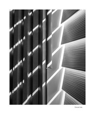 Invasion (agianelo) Tags: window shade blind venetian monochrome bw bn blackandwhite contrast stark