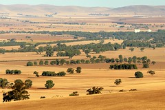 Laura Lookout Lines and Landscapes, Southern Flinders Ranges, South Australia (Red Nomad OZ) Tags: laura midnorth australia southaustralia landscape scenery outdoor farm farmland arid agriculture mountain hill rural lookout lauralookout southernflinders flindersranges southernflindersranges