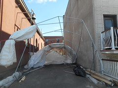 Wind (navejo) Tags: montreal quebec canada shelter tempo skeleton wind windy
