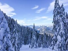 view to Isar valley (genelabo) Tags: schönberg fleck lenggries bayern bavaria ski snowboard snow schnee skitour sun alps berge 1621 m voralpen isartal genelabo sky himmel snowfield view white weiss deutschland germany wald bäume trees forest wood tree landscape isar valley tal