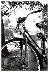 analog - EOS 300X / EF 40/2.8 - HP5 (tom-schulz) Tags: eos300x ef4028 ilford hp5 film 35mm analog monochrom bw sw rahmen frame stralsund thomasschulz fahrrad