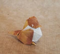 【Origami】Sparrow (Lonely-Shiba) Tags: origami original bird 折り紙