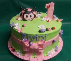 Lady Bug 1st Birthday (1)
