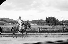 Jinete desde el automóvil. (Marcos Núñez Núñez) Tags: jinete caballo filmphotography streetphotography streetphotographer blackandwhite film fotografíaanalógica nikonn55 nikon analognikon bw blancoynegro mx oaxaca calle kodaktrixpan400 kodakfilm