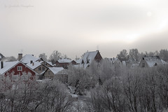 Sergiev Posad in winter (Lyutik966) Tags: sergievposad russia goldring city cityscape house building nature tree snow winter roof window