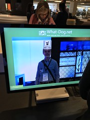 """Dog AI at Microsoft • <a style=""""font-size:0.8em;"""" href=""""http://www.flickr.com/photos/109120354@N07/47237697402/"""" target=""""_blank"""">View on Flickr</a>"""