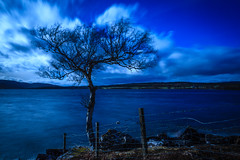 Blue skies on a blustery day (Superali007) Tags: landscape lochduntelchaig canon canon7d efs1585mmf3556isusm efs1585mm ecosse scotland scottish scenic sky loch tree tranquility longexposure clouds blustery highlands invernessshire