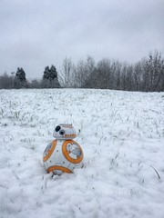 Snowday with BB-8...2019 (cinos) Tags: snowday ireland bb8 snow winter