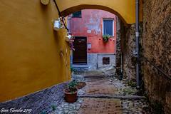 Genova e i suoi colori (Gian Floridia) Tags: genova architettura arco caruggi colori quartieredelcarmine vicoli