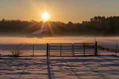 barn sunrise (t s george) Tags: cold winter frozenfingers sunrise sun farm barn newengland massachusetts canon6dmarkii