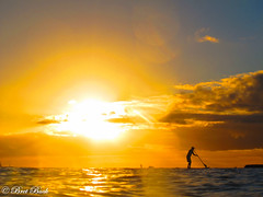Waikiki paddle-boarder at sunset (Bret Buck) Tags: backlighting backlit silhouette waikiki honolulu beach canon hawaii oahu ocean pacific sunset swimming wpdc34 paddle board paddleboard sunsets g12