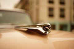 Pink Cadillac 1955 (geraldineh.dutilly) Tags: cars pink cadillac vintage old paris emblem hood macro drive car automobile classic