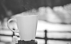 Classic daily pleasure... (esterc1) Tags: té taza invierno frío bebida