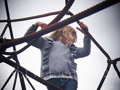 Entangled at the Maidstone Park Playground 45 (ArdieBeaPhotography) Tags: playground fun park public dusk evening early flyingfox zipline roundabout spinning climbing ropes frame web net slide long steep high rock seesaw seasaw centrifugalforce hanging running run hang swing pokemon cling grip family cousins brother sister niece nephew uncle aunt mother father parent blonde hair plaits pigtails boyfriend girlfriend husband wife cute pretty beautiful handsome goodlooking smart loving caring kind careful play together help support hold lift carry teen preteen young girl boy preschooler tamronspaf2875mmf28xrdildasphericalif