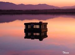 Villeneuve-de-la-Raho (Gatodidi) Tags: villeneuve raho francia france lac lago atardecer catalunya nord cataluña paisaje landscapes paisatje natura naturaleza belleza puesta sol
