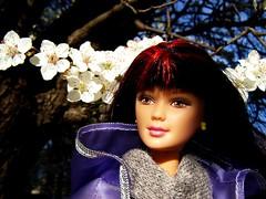 Sakura Mariko (Nickolas Hananniah) Tags: mariko mari generationgirl barbie doll toy fashion fashiondoll spring park blossom march cool smile brunette