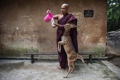 natgeotravel)_-744252882 (rajbhardwaj61) Tags: religion hinduism buddhist natura