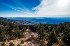 Mount Mitchell [03.19.19] (Andrew H Wagner | AHWagner Photo) Tags: 5dmk3 5d3 5dmkiii 5dmarkiii 5dmark3 canon eos 1635l 1635mm f4 f4l is usm ultrawideangle wideangle mountmitchellstatepark mountmitchell statepark northcarolina nc burnsville blueridgeparkway blueridgeparkwaynationalpark nationalpark yanceycounty yancey highestpeak