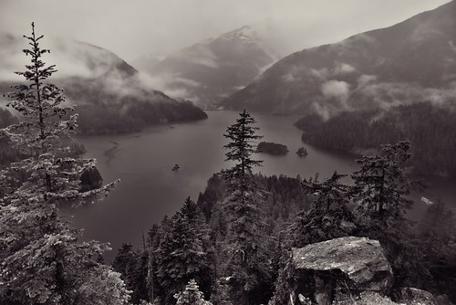 A View to Forests, Mountains and a Lake at Diablo Lake Vista Point (Black & White, North Cascades National Park Service Complex)