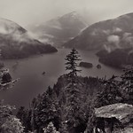 A View to Forests, Mountains and a Lake at Diablo Lake Vista Point (Black & White, North Cascades National Park Service Complex) thumbnail