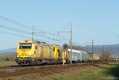 Double jaune (Delff DUMONT von WALTHER.u.CRONECK) Tags: alstom train railway eisenbahn railpictures bahnbilder photodetrain bahn locomotive eisenbahnbilder sncf bb75000 infra bb75093