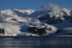 IMG_6873 (y.awanohara) Tags: cuvervilleisland cuverville antarctica antarcticpeninsula icebergs glaciers blue january2019