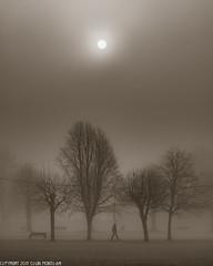 DSC_3446: Foggy morning (Colin McIntosh) Tags: fog winter nikon d610 105mm f25 pc manual focus