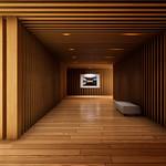 Corridor Museum Demo Part1 (木の廊下の美術館デモ)