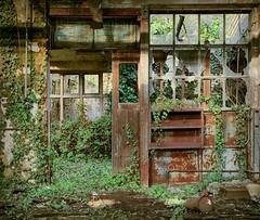 VEB Dschungel (david_drei) Tags: abandoned decay naturübernimmt natur lostplace rost rust rustyandcrusty rusty sonnig hdr sonne