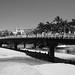 El Puente Peatonal