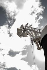 Holgate Windmill Fantail