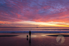 Brilliance (Dancing.With.Wolves) Tags: sunset santa cruz california beach walk dogs dog amazing colors display reflections wife unreal art for nature intense sony a6000 sigma 19mm prime lens outside nikkor