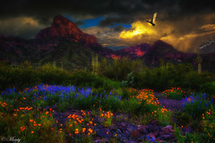 Picacho Peak, Arizona (concho cowboy) Tags: landscape sunset