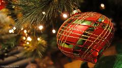 Christmas Tree Bauble (AreKev) Tags: christmasbauble merrychristmas heartbauble heart bauble christmastree christmas xmas tree led lights christmasornament ornament decoration festive bokeh macro sonycybershot sony cybershot sonydscrx100 dscrx100