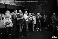 2019 Bosuil-Het publiek bij Steady State en The Animals 20-ZW