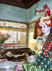 Snake Temple - Bago, Myanmar (Cuernavaca, Morelos Mexico) Tags: birmania myanmar bago asia buddha buda snake awesome amazing luck burma nikon d5300 pegu