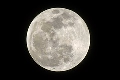 Super Full Wolf Moon (Diane Marshman) Tags: super blood wolf full moon january 20 2019 celestial planet superbloodwolffullmoon cold sky blackbackground closeup