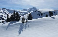 DSCF3723 (Laurent Lebois ©) Tags: laurentlebois france nature montagne mountain montana alpes alps alpen paysage landscape пейзаж paisaje savoie beaufortain pierramenta arèchesbeaufort