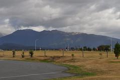 ALPACAS - Alpaga Nouvelle Zelande 2019 (13) (hube.marc) Tags: alpacas alpaga nouvelle zelande 2019 vicugna pacos