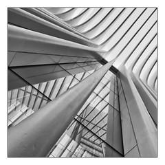 Oculus (GAPHIKER) Tags: worldtradecenter wtc oculus transportation hub newyorkcity nyc manhattan oneworldtradecenter reflection santiagocalatrava calatrava portauthoritytranshudson